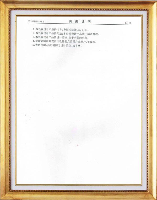 240 ml nasal irrigator appearance patent